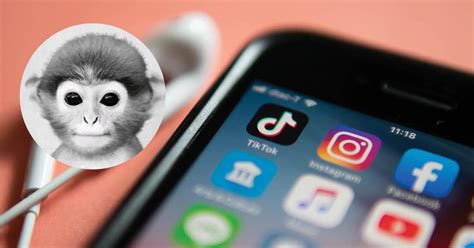 The Monkey PFP on TikTok Is Something You Want to Avoid at