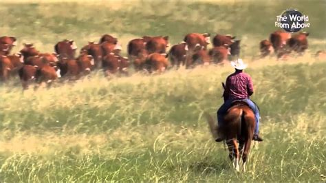 Cattle Call Performed by LeAnn Rimes & Eddy Arnold - YouTube